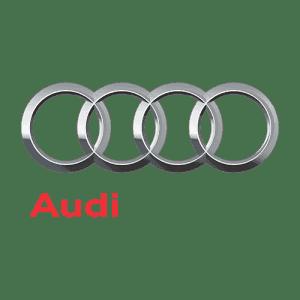 Коврики из экокожи в Audi