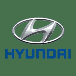 Коврики из экокожи в Hyundai