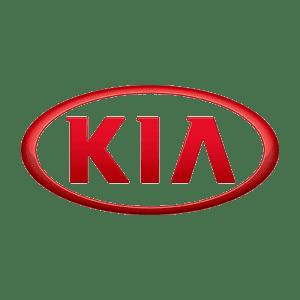 Автомобильные коврики из экокожи в Kia