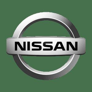 Коврики из экокожи в Nissan