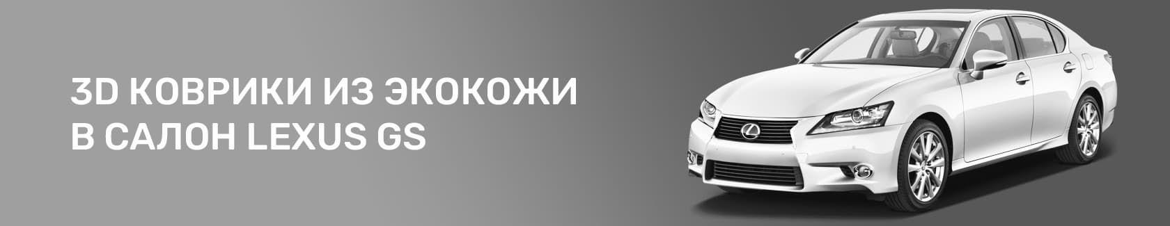 3D коврики из экокожи для Lexus GS